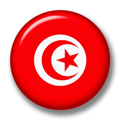 チュニジア共和国の国旗-缶バッジ