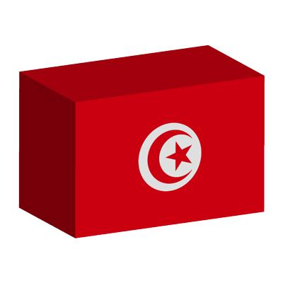 チュニジア共和国の国旗-積み木