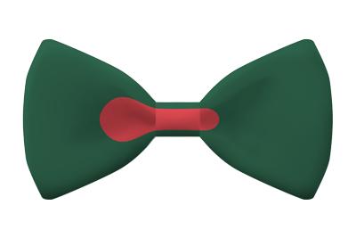 バングラデシュ人民共和国の国旗-蝶タイ