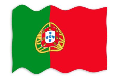 ポルトガル共和国の国旗-波