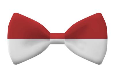 モナコ公国の国旗-蝶タイ