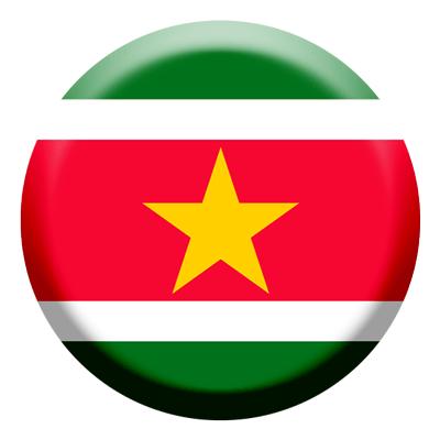 スリナム共和国の国旗-コイン