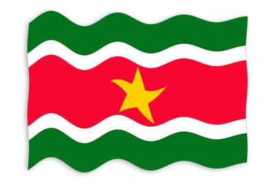 スリナム共和国の国旗-波