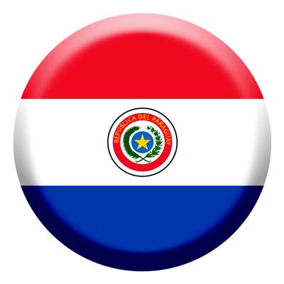 パラグアイ共和国の国旗-コイン