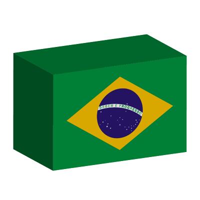 ブラジル連邦共和国の国旗-積み木