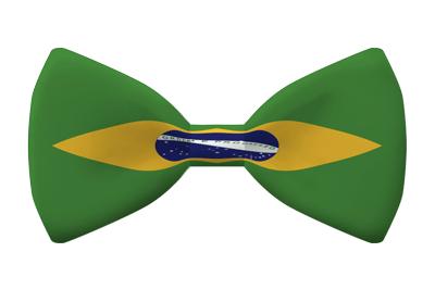 ブラジル連邦共和国の国旗-蝶タイ