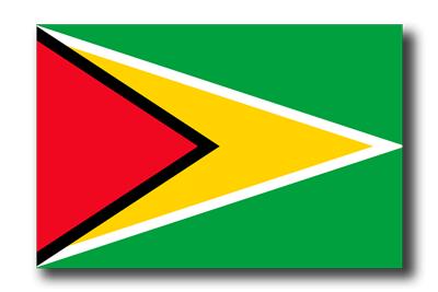 ガイアナ共和国の国旗-ドロップシャドウ