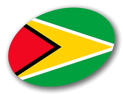 ガイアナ共和国の国旗-楕円