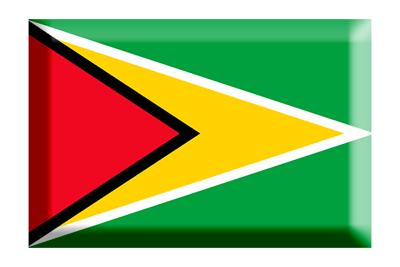 ガイアナ共和国の国旗-板チョコ
