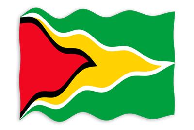 ガイアナ共和国の国旗-波