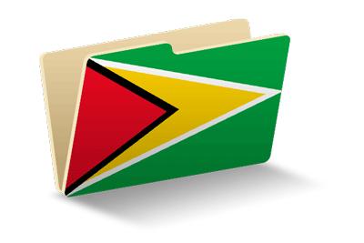 ガイアナ共和国の国旗-フォルダ