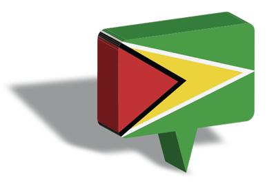 ガイアナ共和国の国旗-マップピン