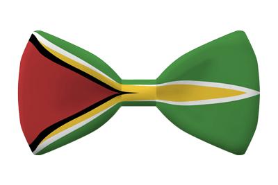 ガイアナ共和国の国旗-蝶タイ