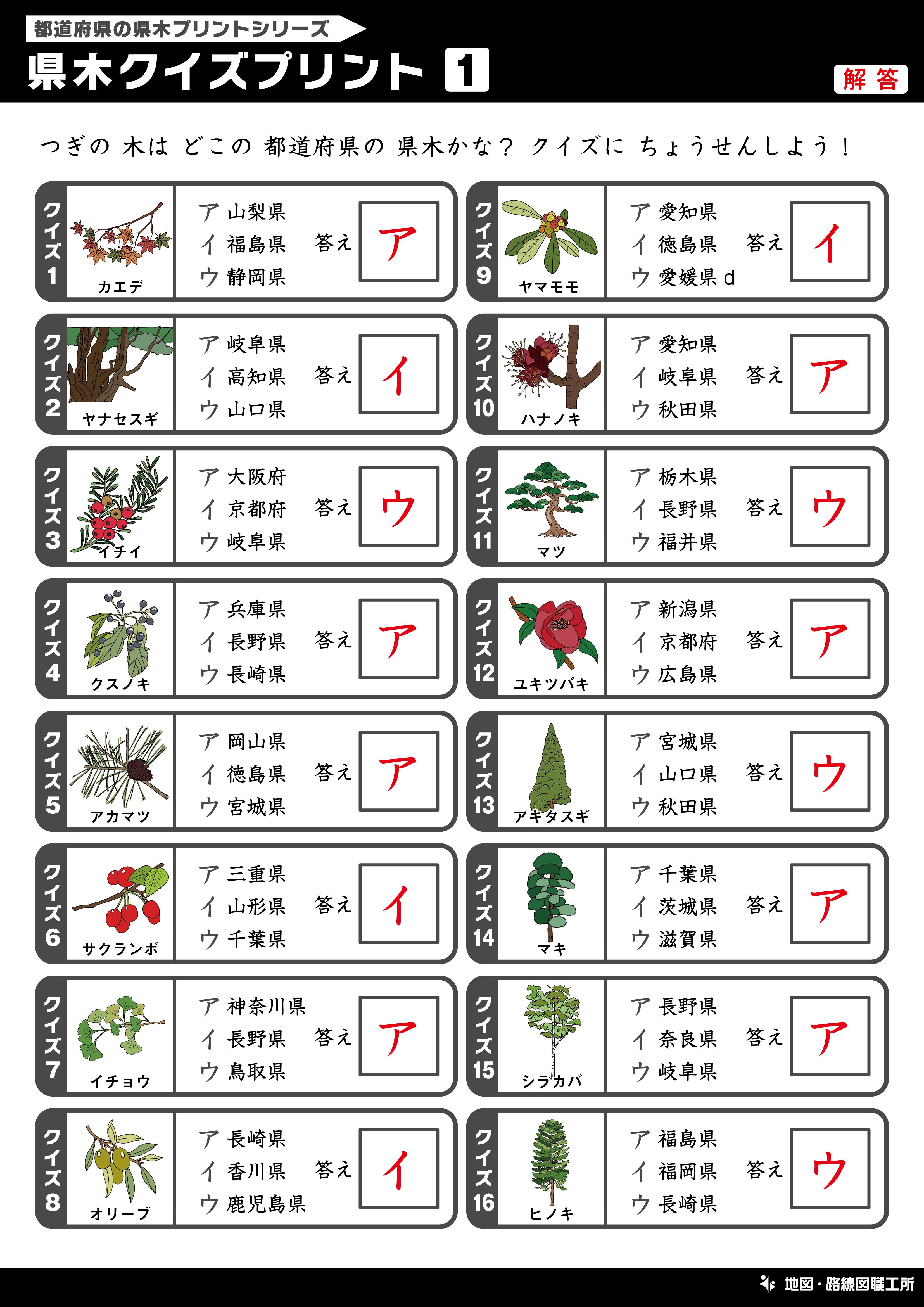 県木クイズプリント 選択問題