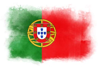 ポルトガル共和国の国旗イラスト 水彩タイプ