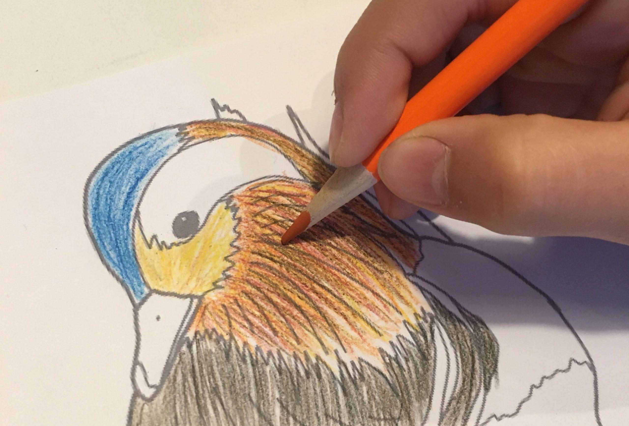 県鳥一覧 47都道府県分のぬりえイラスト 無料ダウンロード