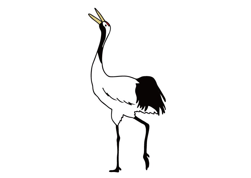 北海道の県鳥-タンチョウ
