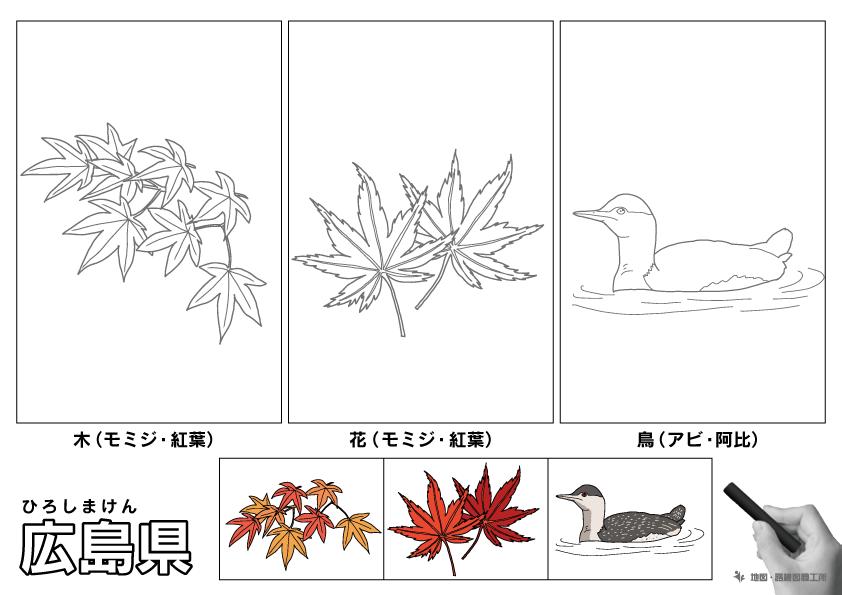 広島県 県木 県花 県鳥 のイラスト・ぬりえ