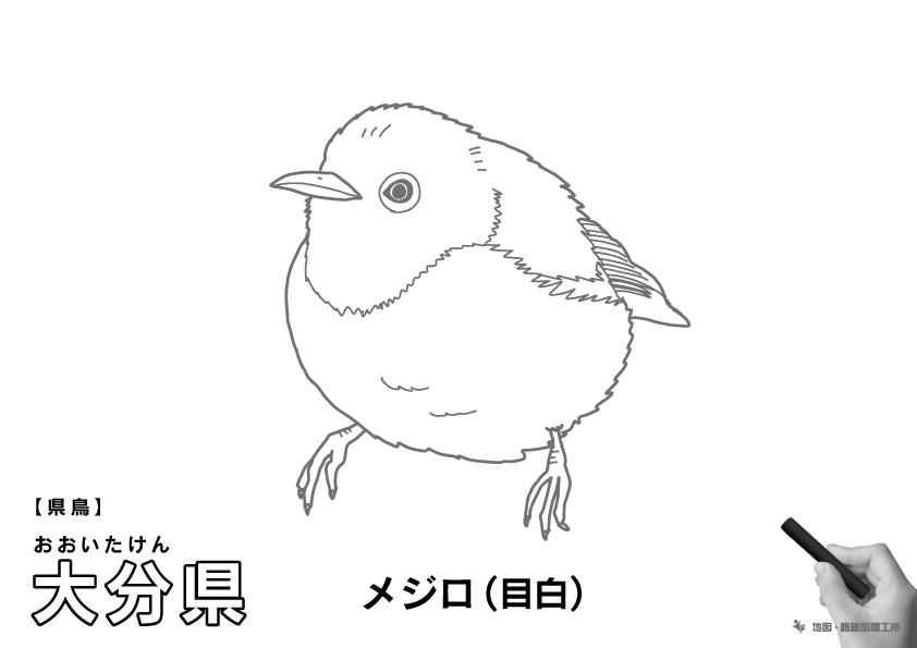 県鳥 大分県 メジロ(目白)のイラスト・ぬりえ