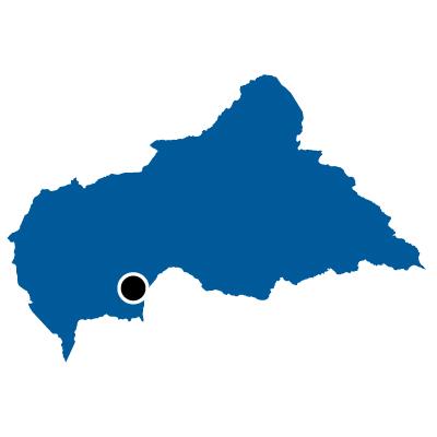 中央アフリカ共和国無料フリーイラスト|首都(青)