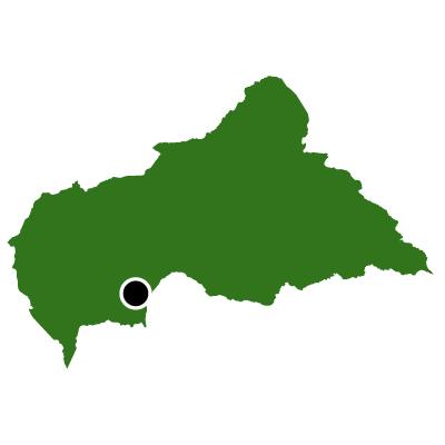 中央アフリカ共和国無料フリーイラスト|首都(緑)