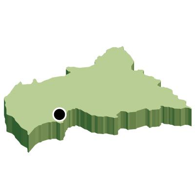 中央アフリカ共和国無料フリーイラスト|首都・立体(緑)