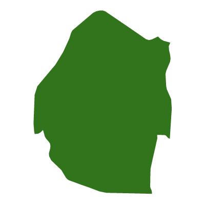 無地(緑)